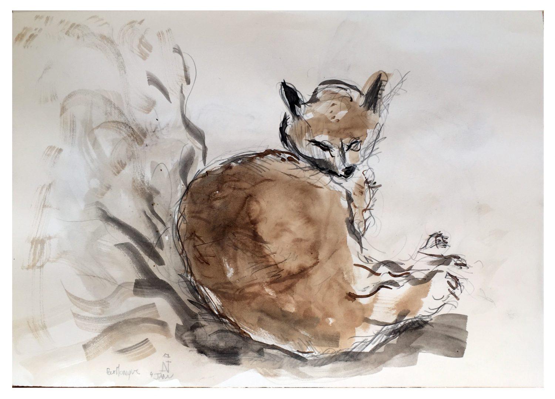 Le chat de Gennainvillier