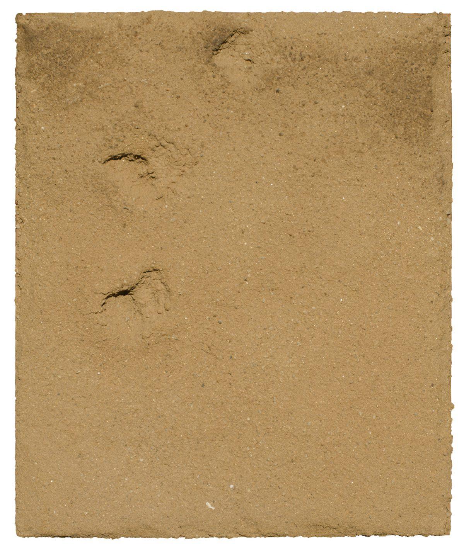 Angel Alonso - Empreintes - Terre sur panneau