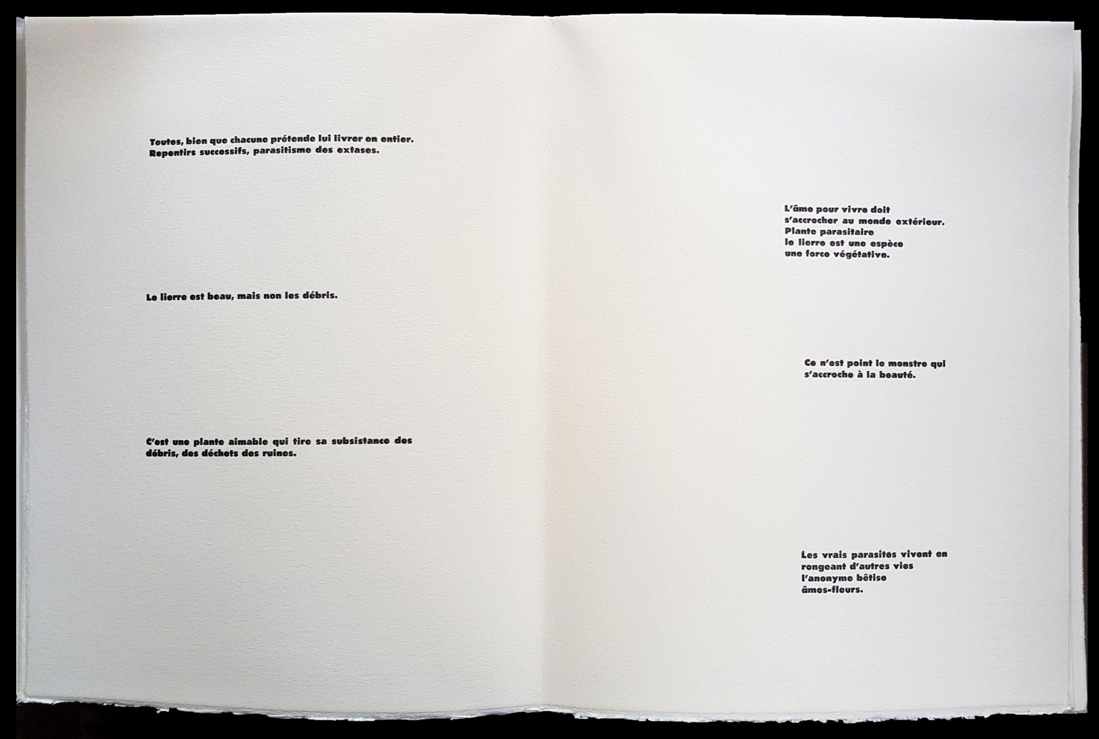Beauté Cadavre - 1989